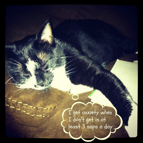 sleepy frank